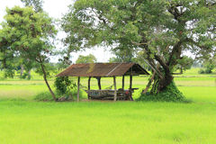 Chałupa w gospodarstwie rolnym Zdjęcie Stock