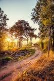 Chałupa w lesie Obrazy Stock
