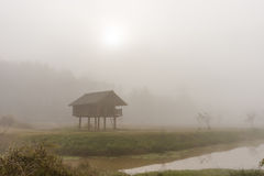 Chałupa w mgle Obrazy Royalty Free
