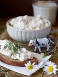 chałupy serowy mleko Obraz Stock