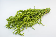 Cha vegetables Royalty Free Stock Photography