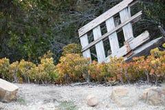 Chabet rośliny i Łamająca brama Zdjęcia Royalty Free