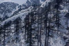 Chabeta smoka Śnieżny widok górski od wagonu kolei linowej Obraz Stock