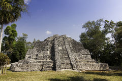 Chacchoben玛雅废墟临近肋前缘玛雅人墨西哥 库存图片