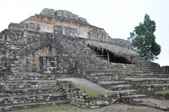 Chacchoben Mayan Ruins Royalty Free Stock Image