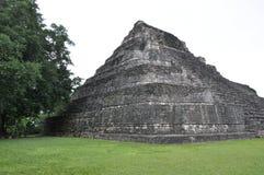 Chacchoben Mayan Ruins Stock Images