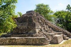 Chacchoben Mayan Ruins G Royalty Free Stock Photography