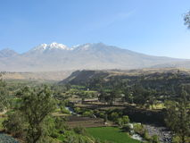 Chachani-Vulkan Arequipa Stockbilder