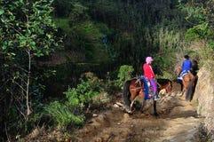 Chachapoyas - le Pérou Image libre de droits