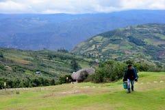 Chachapoyas - le Pérou Image stock