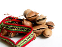 Chachas. Andean musical instrument on white royalty free stock images