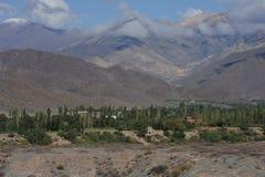 Chachi auf dem Argentinien Anden Lizenzfreies Stockbild