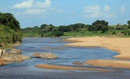 Chacma pawian rzeką Zdjęcia Royalty Free
