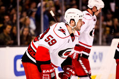 Chad LaRose Carolina Hurricanes Royalty Free Stock Images