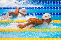 Chad Le Clos ( RSA) Royalty Free Stock Image
