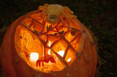 CHADDS福特, PA - 10月26日:在伟大的南瓜雕刻2013年10月26日的Carve的蜘蛛南瓜比赛 库存图片