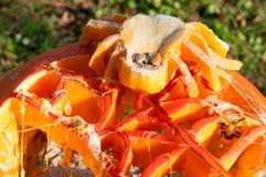 CHADDS FORD, PA - 26. OKTOBER: Spinnen-Kürbis am großen Kürbis Carve Wettbewerb am 26. Oktober 2013 schnitzend stockfotos