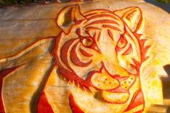 CHADDS FORD, PA - 26. OKTOBER: Tiger Pumpkin am großen Kürbis Carve Wettbewerb am 26. Oktober 2013 schnitzend stockfotografie