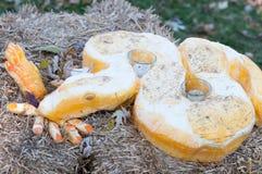 CHADDS FORD, PA - 26 OTTOBRE: Serpeggi la zucca alla grande zucca Carve che scolpisce il concorso il 26 ottobre 2013 Fotografia Stock Libera da Diritti