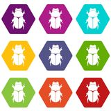 Chafer beetle icon set color hexahedron. Chafer beetle icon set many color hexahedron isolated on white vector illustration vector illustration