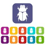 Chafer beetle icons set. Vector illustration in flat style in colors red, blue, green, and other vector illustration