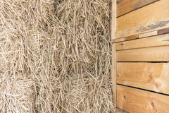 Chaff background. In the farm Royalty Free Stock Images