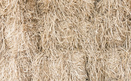 Chaff background. Chaff for background in farm Royalty Free Stock Photography