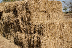 Chaff Royalty Free Stock Photos