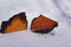 Chaga-Pilzklumpen, die auf dem Schnee liegen Lizenzfreies Stockfoto