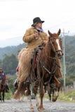 Chagra na konia plecy Obrazy Stock