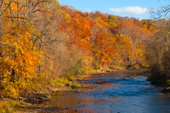 Autumn river. The Chagrin River in Gates Mills, Ohio, flowing through brilliant autumn color royalty free stock photography