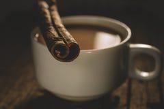 chai masala Royaltyfri Fotografi