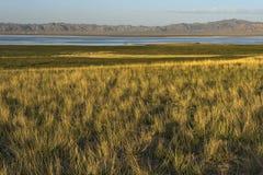 chaidan озеро da Стоковые Изображения