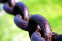 Chain. Old rusty chain with green grass in the background Stock Image
