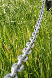 Chain. Over grass Stock Image