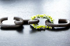 A chain is only as strong as its weakest link. Proverb one link made of flowers Stock Photography