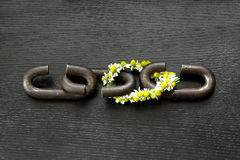 A chain is only as strong as its weakest link. Proverb one link made of flowers Stock Image