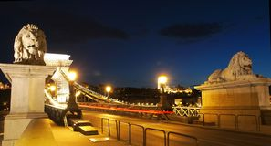 Chain Bridge. With Lion Statues in Budapest, Hungary Stock Image