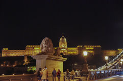 Chain Bridge and the Buda Castle in the Background at Night Royalty Free Stock Images