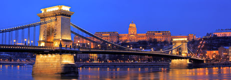 The Chain Bridge in Budapest. The Royal palace of Buda and the Chain Bridge in Budapest, Hungary by night Royalty Free Stock Photos