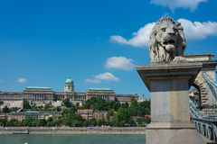 Chain bridge Budapest Hungary with Castle Hill Stock Image