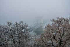 The Chain Bridge in a foggy morning, Budapest, Hungary royalty free stock photos