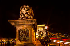Chain Bridge Lion Danube River Traffic Lights Budapest Hungary Stock Images
