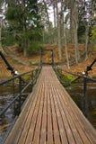 Chain Bridge over River Royalty Free Stock Photos