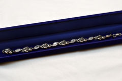 Chain in the case. Silver chain with blue carrying case Stock Image