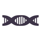 Chain of DNA with information genetic Stock Photos