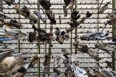 Chain dressing room in Landek park Stock Photo
