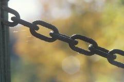 Chain on a gate, Catskills, NY Royalty Free Stock Photos