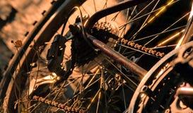 Mountain Bike Chain. Chain gears of an old Mountain bike Royalty Free Stock Photo