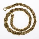chain guldhalsband Royaltyfri Bild